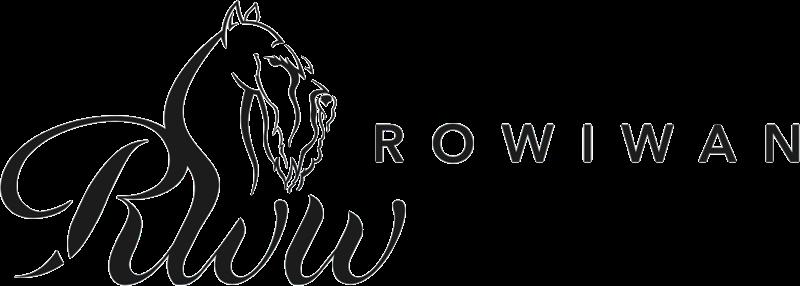 Rowiwan Store